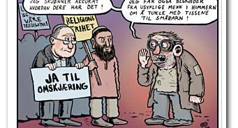 - Skammelig tegneserie, mener Israels ambassadør etter Dagbladets satiriske Fagprat-stripe om omskjæring
