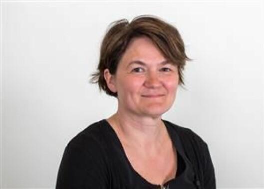 Førsteamanuensis Birgit Røe Mathisen ved fakultet for samfunnsfag ved Nord universitet.