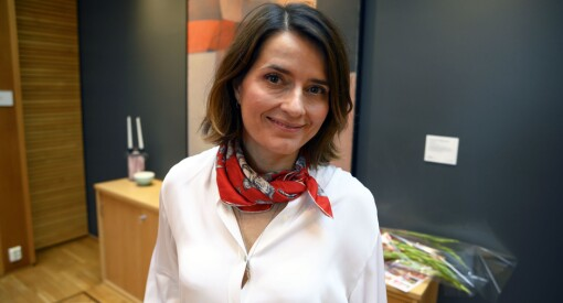 Kjersti Mo fikk toppjobben midt i en storm av kutt og kritikk: Slik skal hun lede NFI