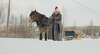 Sindre jakter kjæreste til bestemor (75) i julekalenderen til Folkebladet