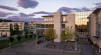 Disse 55 har søkt jobben som kommunikasjonsrådgiver hos NTNU i Ålesund