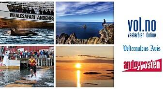 Fire sommervikarer til Polaris Media i Vesterålen