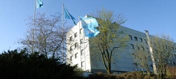 Disse 26 vil bli utviklingsredaktør i NRK distriktsdivisjon