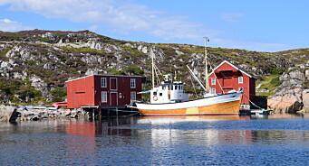 Frøya.no søker journalist